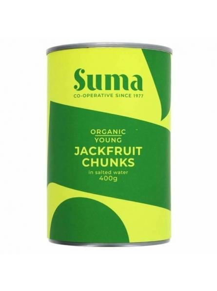 Bucati de Jackfruit tanar...