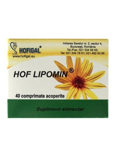 HOFIGAL HOF LIPOMIN 40TB