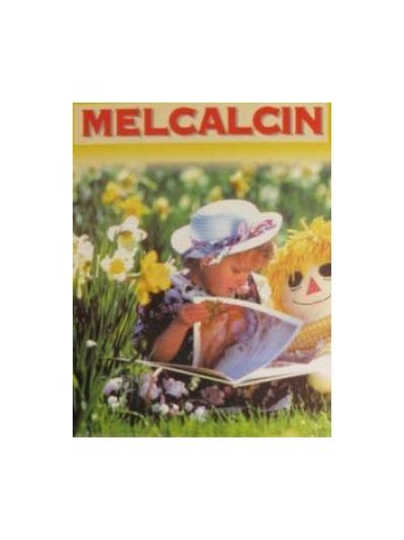 INSTITUT APICOL MELCALCIN...