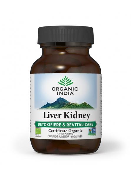 Liver Kidney bio...