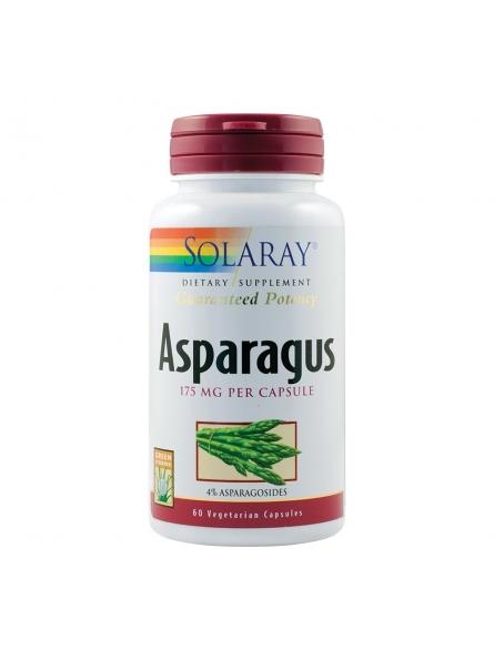 SECOM ASPARAGUS 60CPS