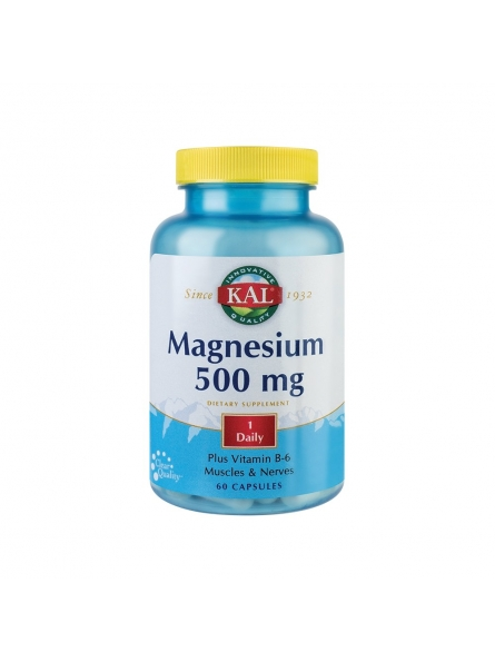 SECOM MAGNESIUM 500MG 60CPS