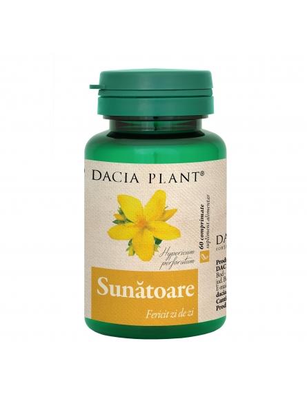 DACIA PLANT SUNATOARE 60CPR