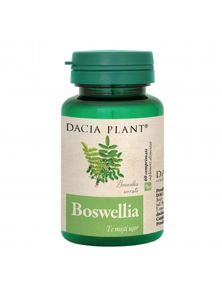 DACIA PLANT BOSWELLIA 60 CPR